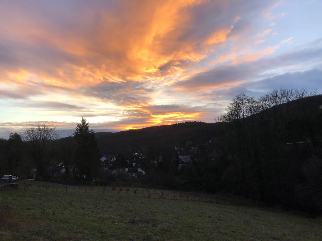 Wandern / Natur (17)
